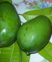 Raw green mangoes